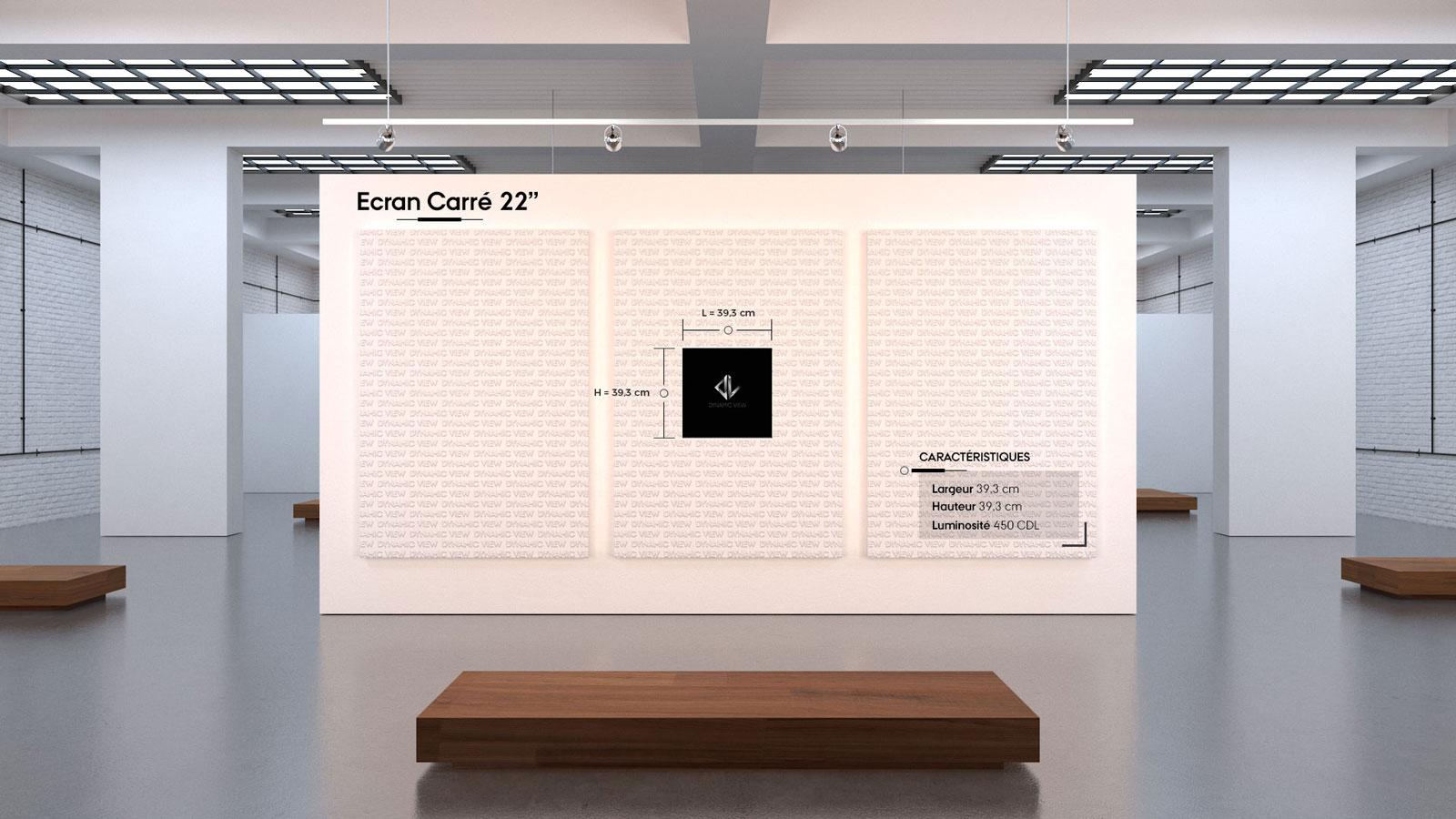 011 Ecran Carre 22''