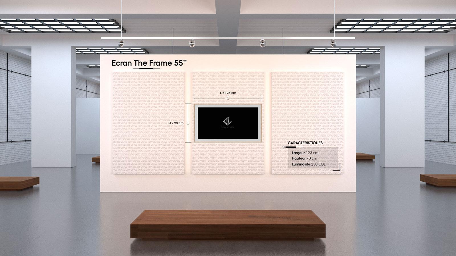 09 Ecran The Frame 55''