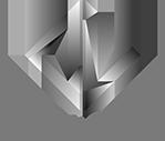 dynamicView logo 200